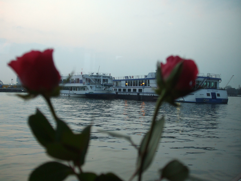 roses-and-barges_2408680290_o.jpg